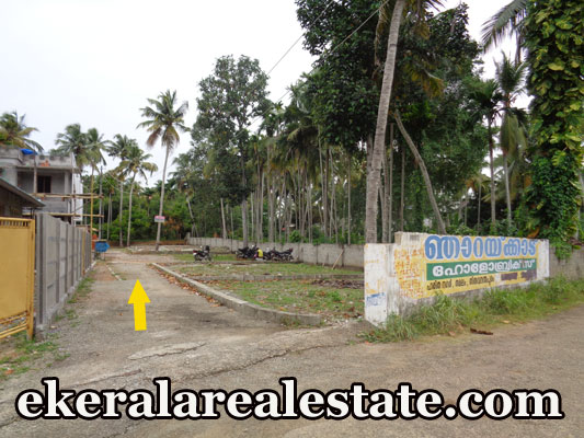 Plots Below 4 lakhs Per Cent Sale at Karamana Pappanamcode Trivandrum Karamana Real Estate