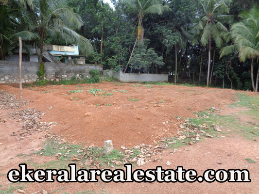 house plot for sale at Poovachal Kattakada Trivandrum real estate kerala trivandrum Poovachal Kattakada Trivandrum