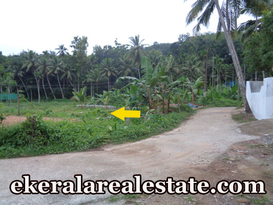 Palode Nedumangad lorry access plot for sale at Palode Nedumangad trivandrum real estate kerala Palode Nedumangad