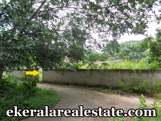 5 lakhs per cent land for sale at Pullanivila Kariavattom Trivandrum real estate kerala trivandrum land sale