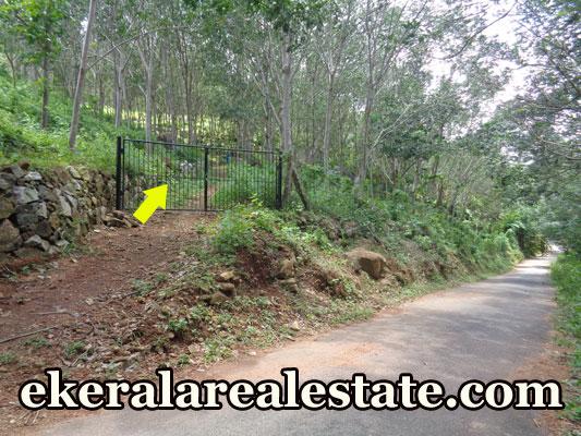 Trivandrum Rubber Plantation Land Sale at Koottappu Near Amboori Vellarada Trivandrum Kerala