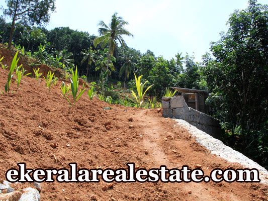 Land-Price-Below-2-Lakhs-Per-Cent-Sale-at-Cheriyakonni-Vattiyoorkavu-Trivandrum-Kerala-Vattiyoorkavu-Real-Estate-Properties