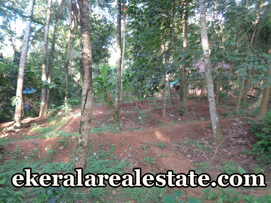 house plot for sale at Naruvamoodu Pravachambalam Trivandrum real estate kerala Naruvamoodu Pravachambalam