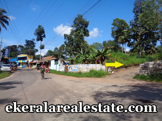 5 lakhs per Cent land for sale at Trivandrum Aruvikkara Kerala real estate properties sale