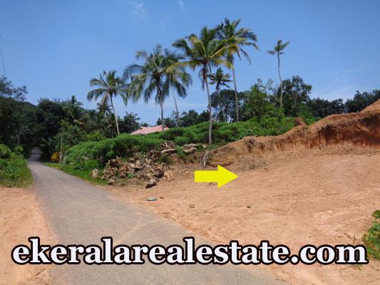 house plot for sale at Subhash Nagar Powdikonam Sreekariyam Trivandrum real estate kerala trivandrum