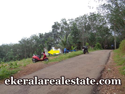2 lakhs per cent house plot for sale at Karipur Nedumangad real estate kerala properties sale