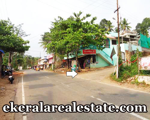 6 lakhs per cent house plot for sale at Pathamkallu Nedumangad Trivandrum real estate kerala