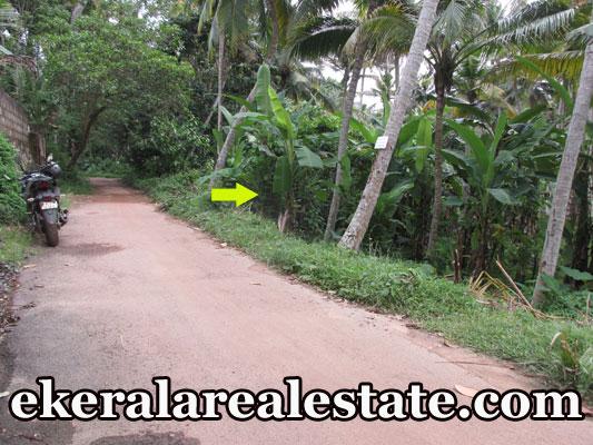 18 Cent land for sale at Mangattukadavu Thirumala real estate kerala trivandrum