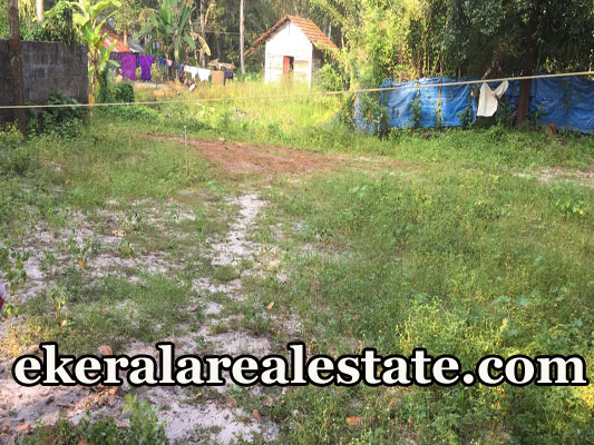 24 Cent land for sale at Purushan Kavala Cherthala Alappuzha real estate kerala trivandrum