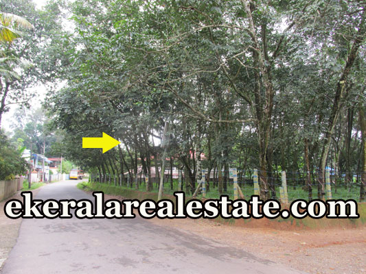 50 Cents house plot for sale at Palamukku Panachavila Anchal Kollam real estate kollam kerala