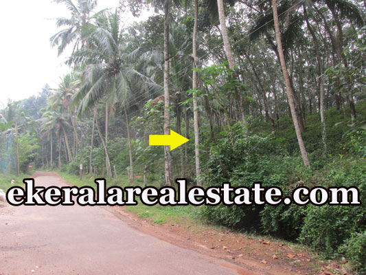 house plot for sale at Kokkottela Aryanad Trivandrum Aryanad real estate kerala