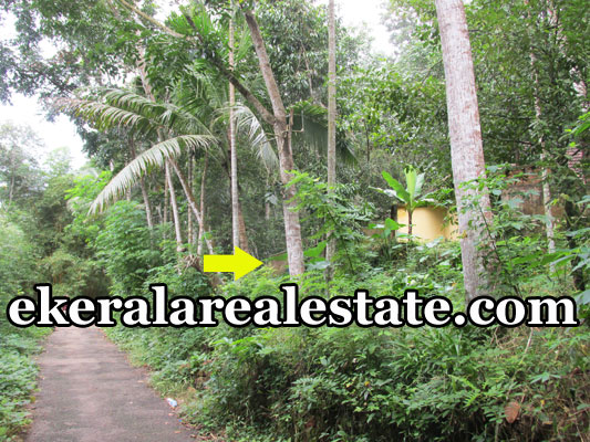 residential land for sale at Mylam Aruvikkara Trivandrum real estate kerala trivandrum