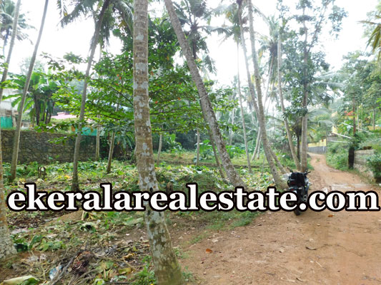 3.5 lakhs per Cent land for sale at Marayamuttom Neyyattinkara Trivandrum real estate kerala