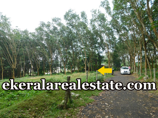 house plot for sale at Pothencode Sreekaryam trivandrum real estate kerala properties sale