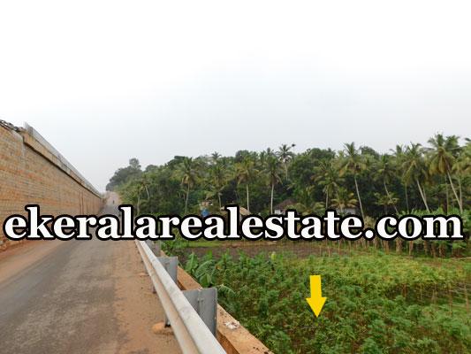 25 Cent house plot for sale at Mukkola Vizhinjam Trivandrum Vizhinjam real estate kerala
