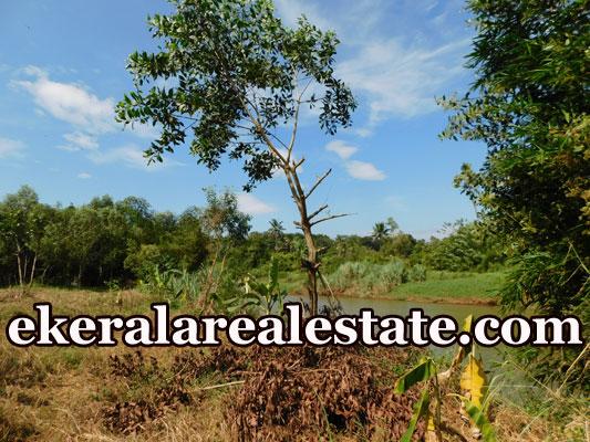 land plot for sale at Kalamachal Vamanapuram Trivandrum real estate kerala trivandrum
