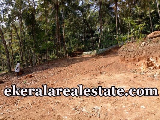 residential land for sale at Malamukal Nettayam Trivandrum Nettayam real estate kerala properties sale