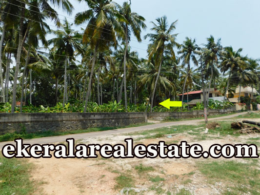 3 lakhs per Cent house plot for sale at Balaramapuram trivandrum real estate kerala